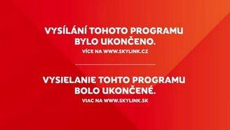 skylink.jpg.8795f7791516b2d90d9411d9b70e15ab.jpg